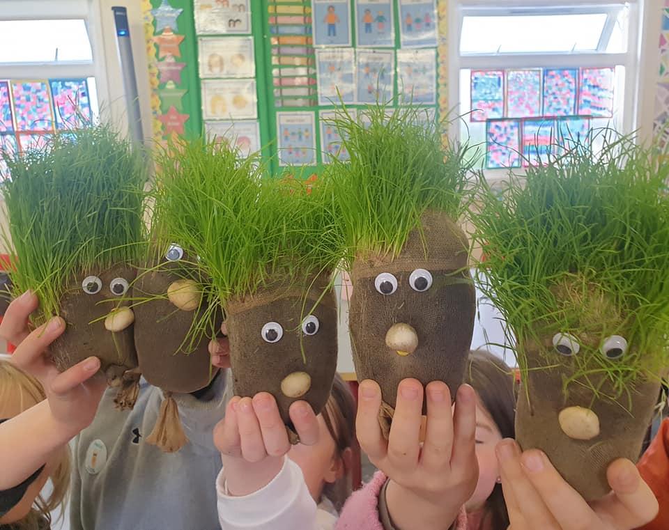 Grassheads 2